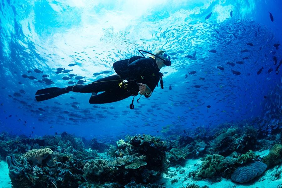 Vores årsrejseforsikring dækker dykning og har desuden fuld dækning.