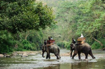 Skal du på ferie i Thailand? Det er en god ide at huske rejseforsikringen, hvis uheldet er ude.